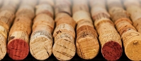 Facts About Wine Corks